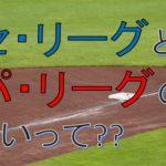 プロ野球のセ・リーグとパ・リーグの違いって?どうやって分かれたの??